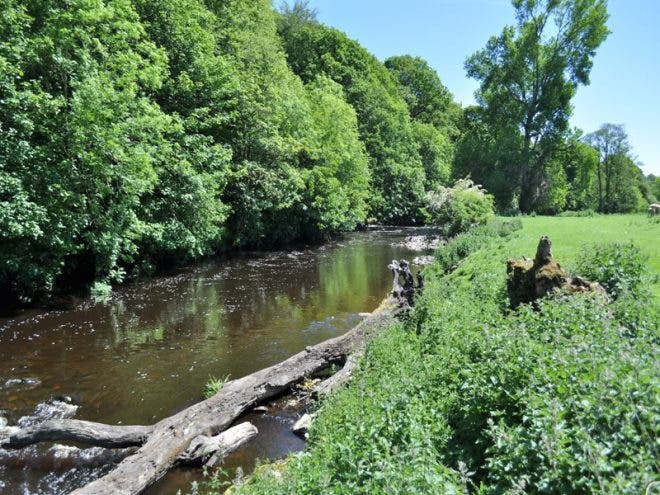riverfaughan