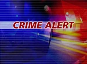 crime-alert-300x220